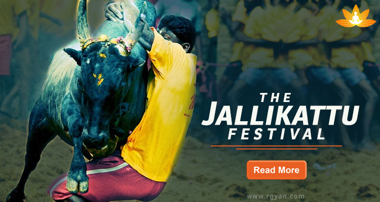 Jallikattu Festival - Comes From Lord Krishna's Bull Fight!