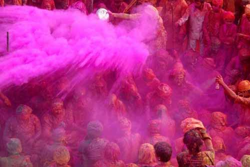 Holi Color: Pink