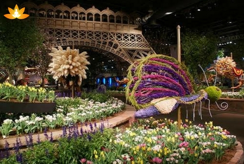 glance of the International Flower Festival