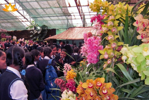 International- Flower-Festival in Sikkim