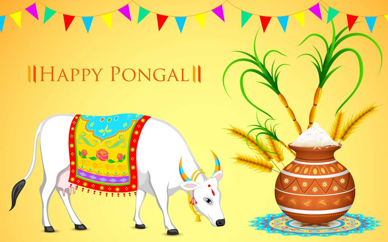 History of Pongal