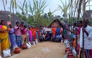 Regional Pongal Celebration
