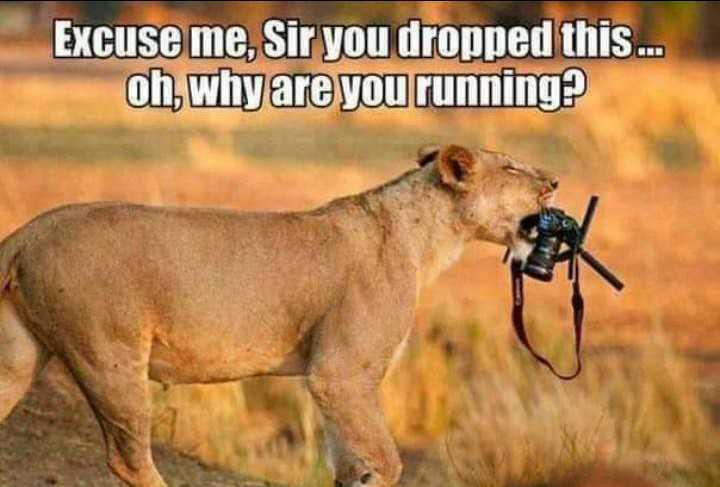 Have you dropped something... 🤣🤣🤣
